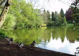 Moseley Park
