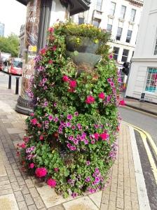Birmingham flowers 3