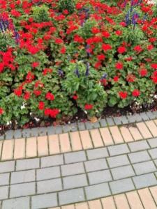Birmingham flowers