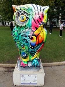 Clash owl