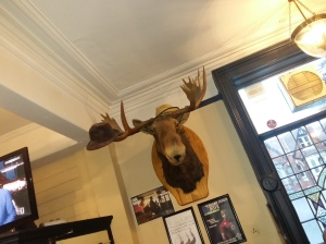 Prince of Wales moosehead