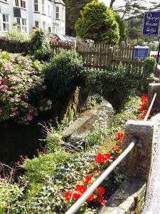 Polperro stream