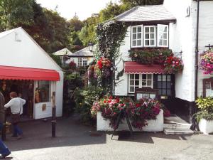 Pretty Polperro house
