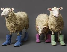 Sheep in boots
