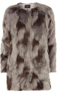 Dorothy Oerkins grey fur coat
