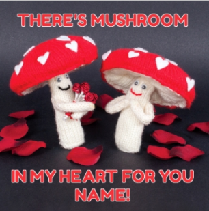 Moonpig mushroom