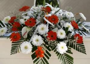 Wedding flowers gerbera daisies