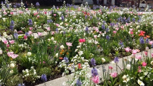 Flower beds in Annecy