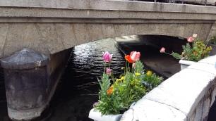 Flower bridge in Annecy (2)