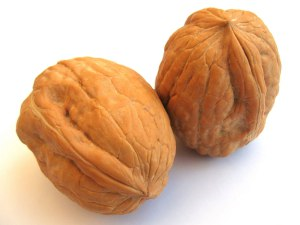 wrinkly-nuts