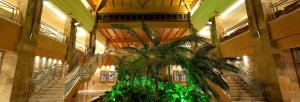 hotel-elba-sara-fuerteventura-downstairs
