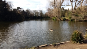 Moseley Park 2