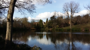 Moseley Park 5