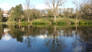 Moseley Park 7
