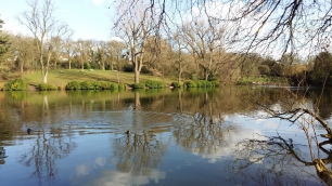 Moseley Park 8