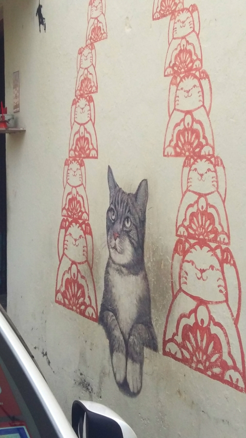 Cat street art Armenian Street