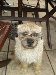 Rufus reading glasses
