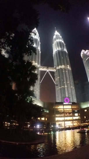 Petronas Towers at night 6