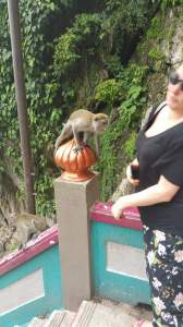 Batu Caves monkey punch