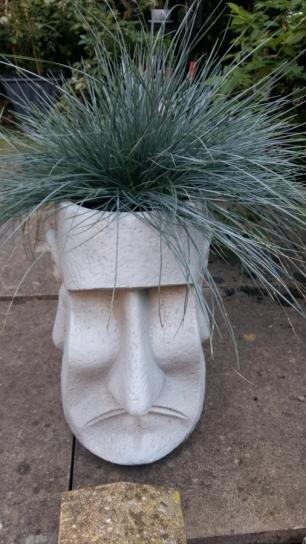 Easter Island Ernie