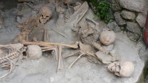 Herculaneum bones