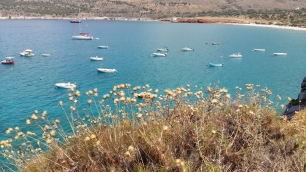 Diros Bay boats