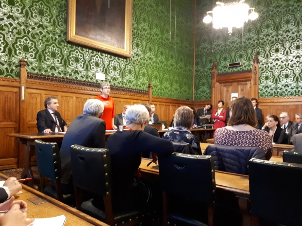 Dignity in Dying parliamentary meeting