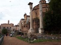 Roman Forum columns