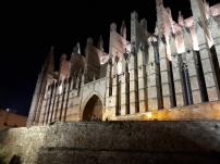 Looking up at Palma Cathedral at night