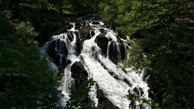 Close up of Swallow Falls