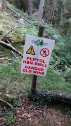 Gwydyr Forest Betws y Coed 6