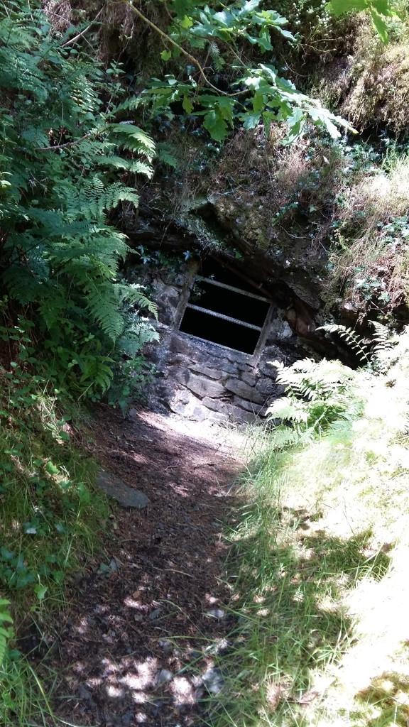 Hidden hidey house Gwydyr Forest Betws y Coed