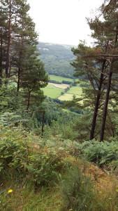 Looking down from Gwydyr Forest walk Betws y Coed