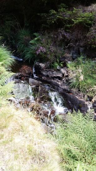 Small waterfall Gwydyr Forest Betws y Coed